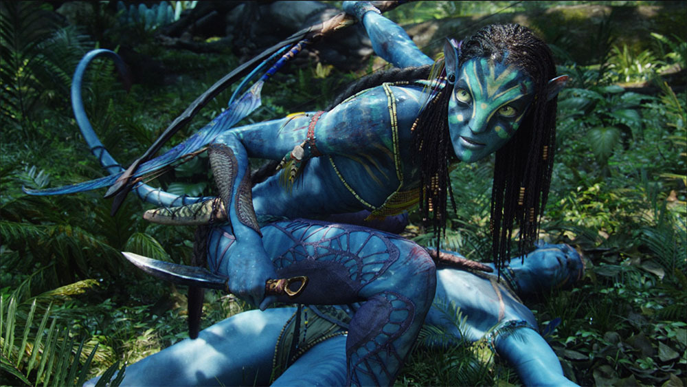 , Avatar 2 Release Date And Who Is In The Cast?